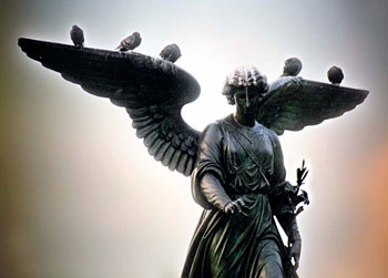 Angels - Fine art photograph by Jonathan Lane